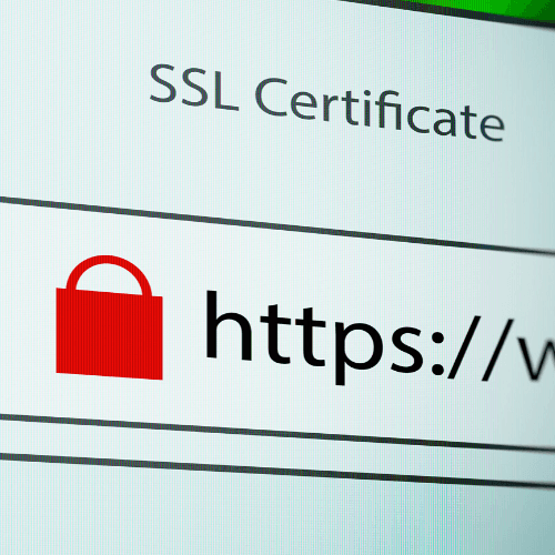 An illustrated picture of SSL